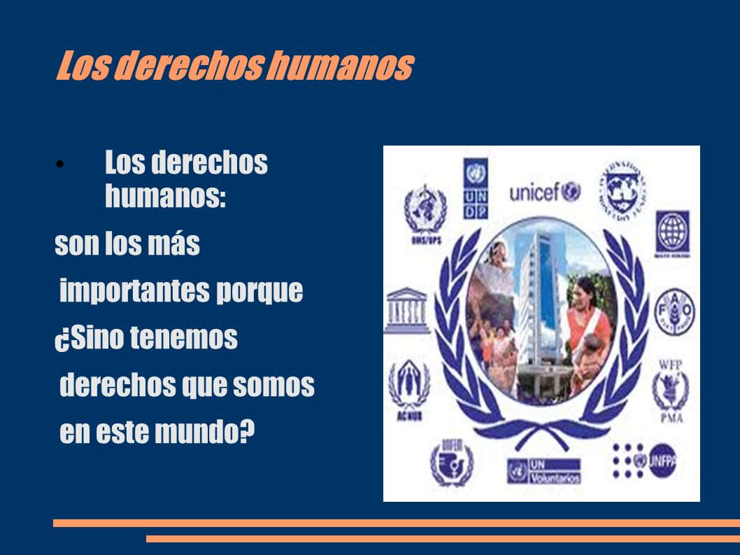 Los derechos humanos Los derechos humanos: son los más