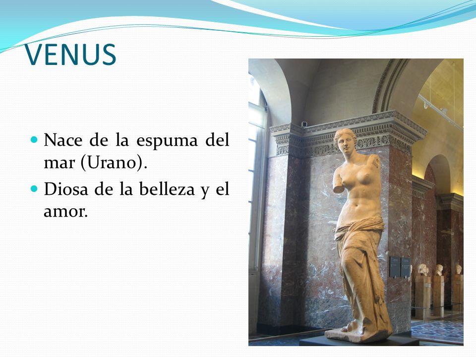 VENUS Nace de la espuma del mar (Urano).