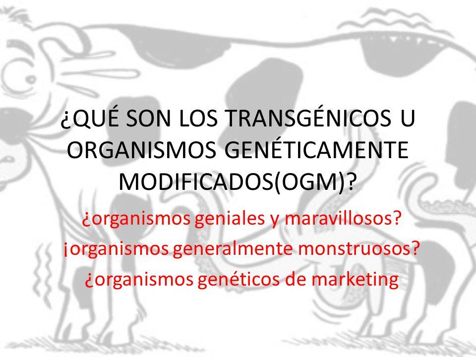 ¿QUÉ SON LOS TRANSGÉNICOS U ORGANISMOS GENÉTICAMENTE MODIFICADOS(OGM)