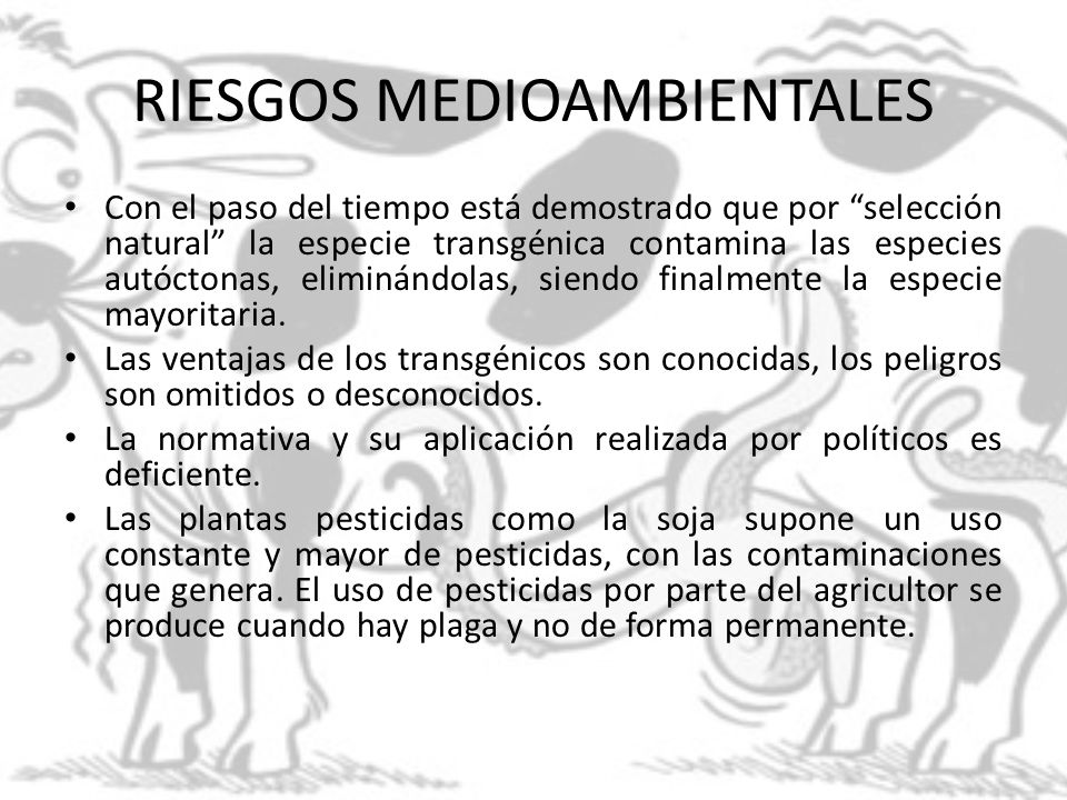 RIESGOS MEDIOAMBIENTALES