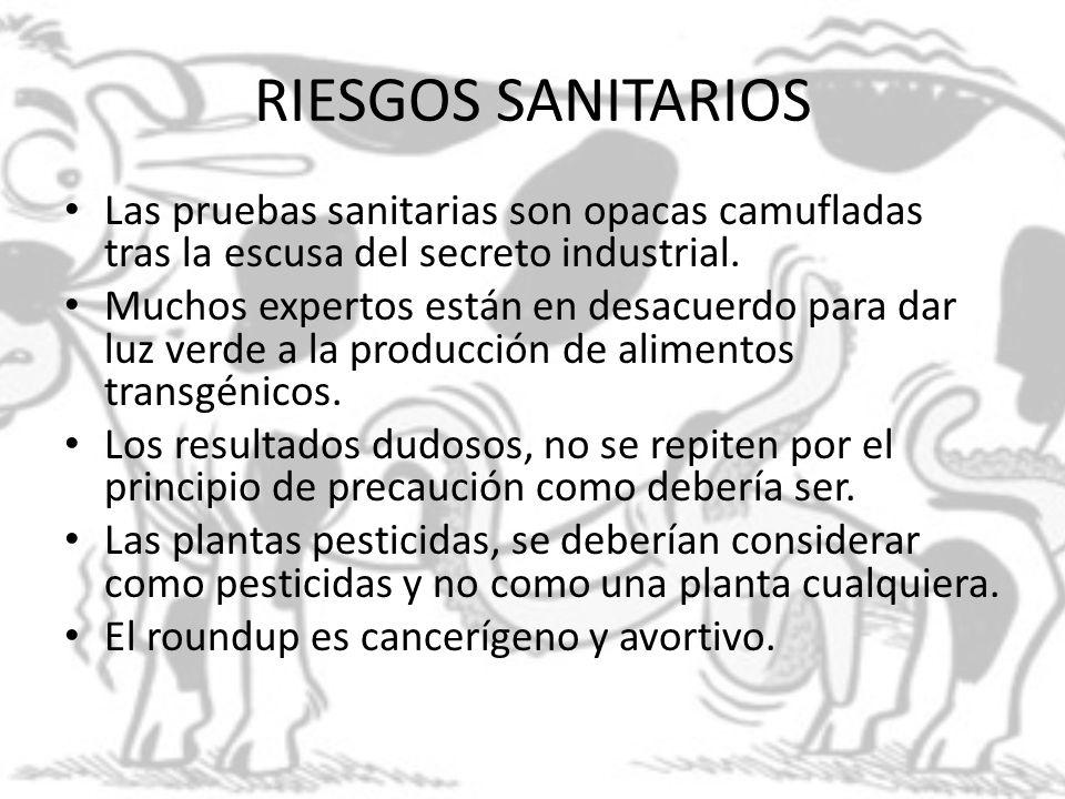 RIESGOS SANITARIOS Las pruebas sanitarias son opacas camufladas tras la escusa del secreto industrial.