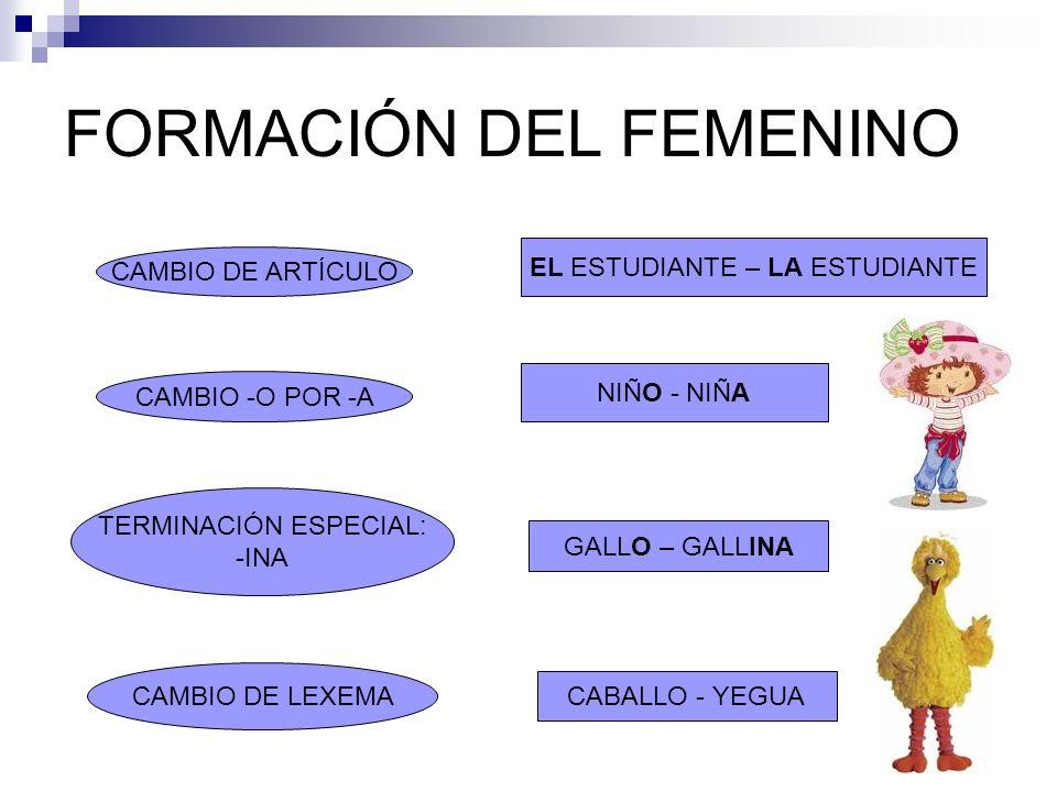 FORMACIÓN DEL FEMENINO