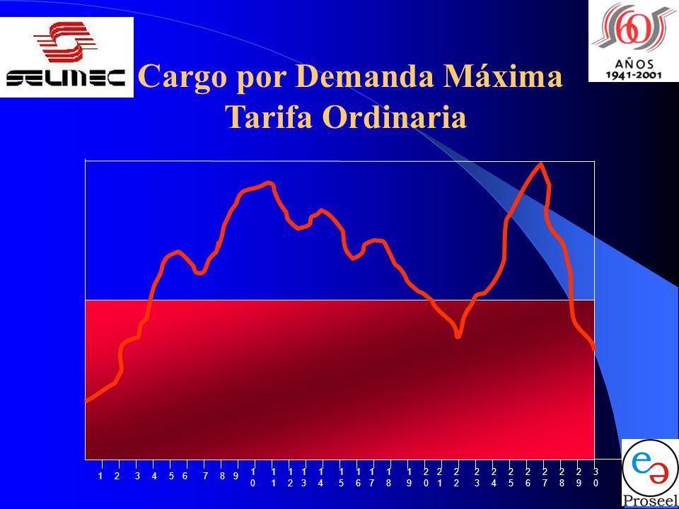 Cargo por Demanda Máxima