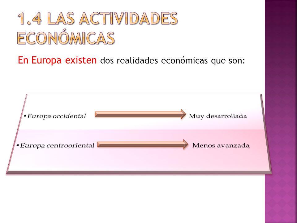 1.4 LAS ACTIVIDADES ECONÓMICAS