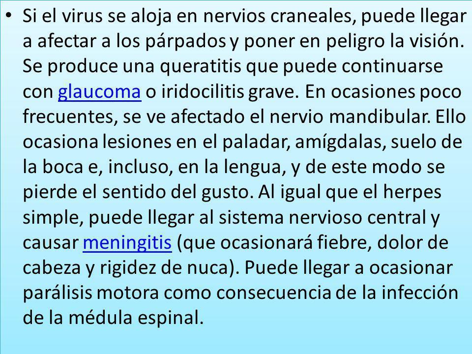 Si el virus se aloja en nervios craneales, puede llegar a afectar a los párpados y poner en peligro la visión.