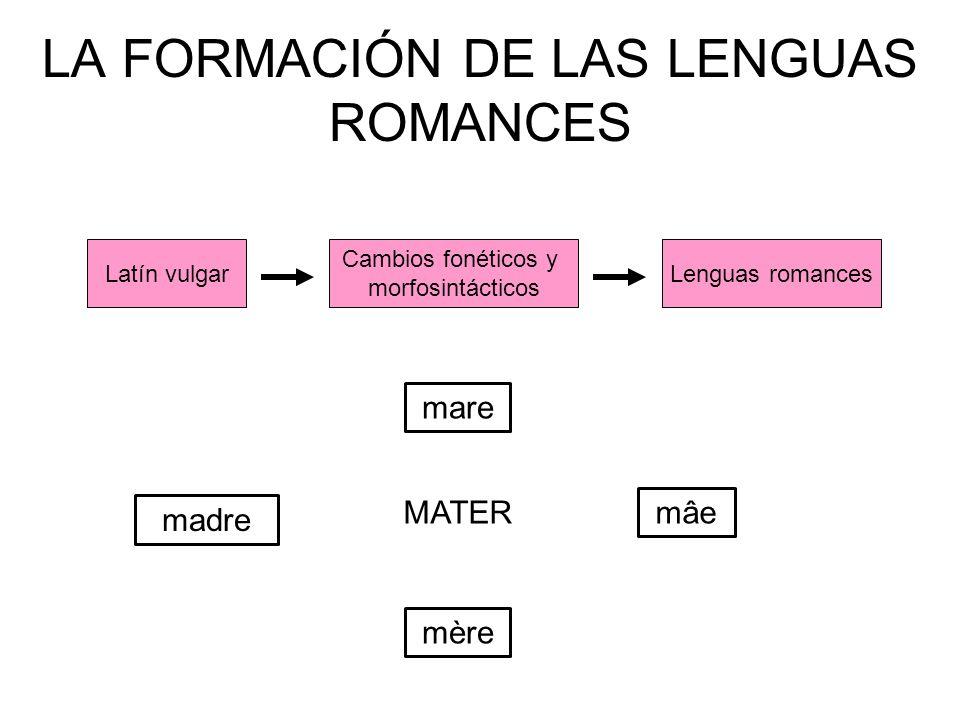 LA FORMACIÓN DE LAS LENGUAS ROMANCES