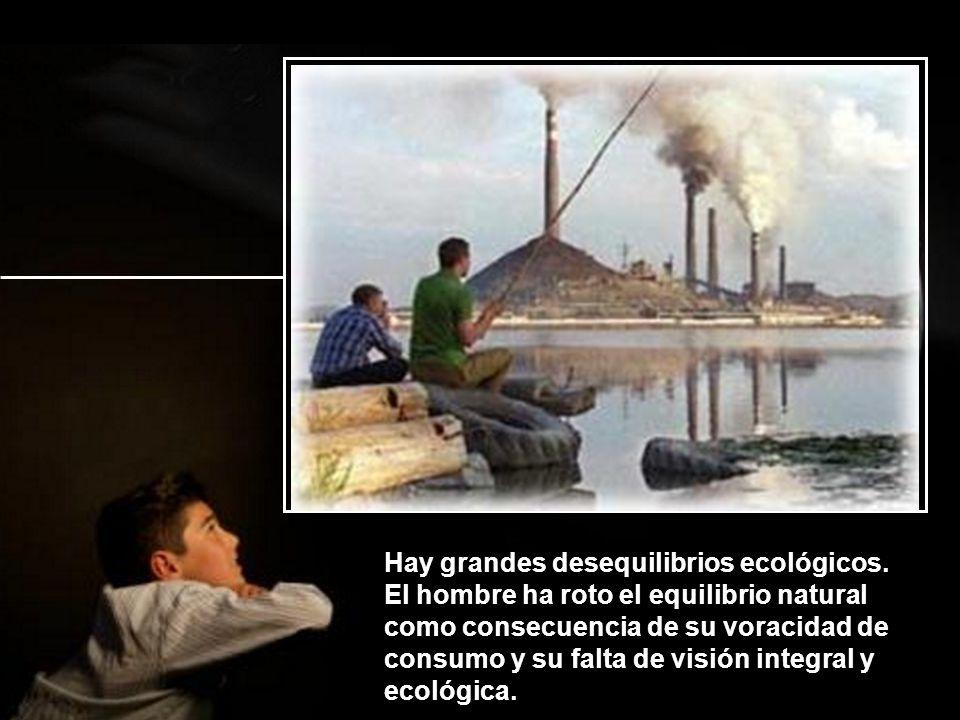 Hay grandes desequilibrios ecológicos.
