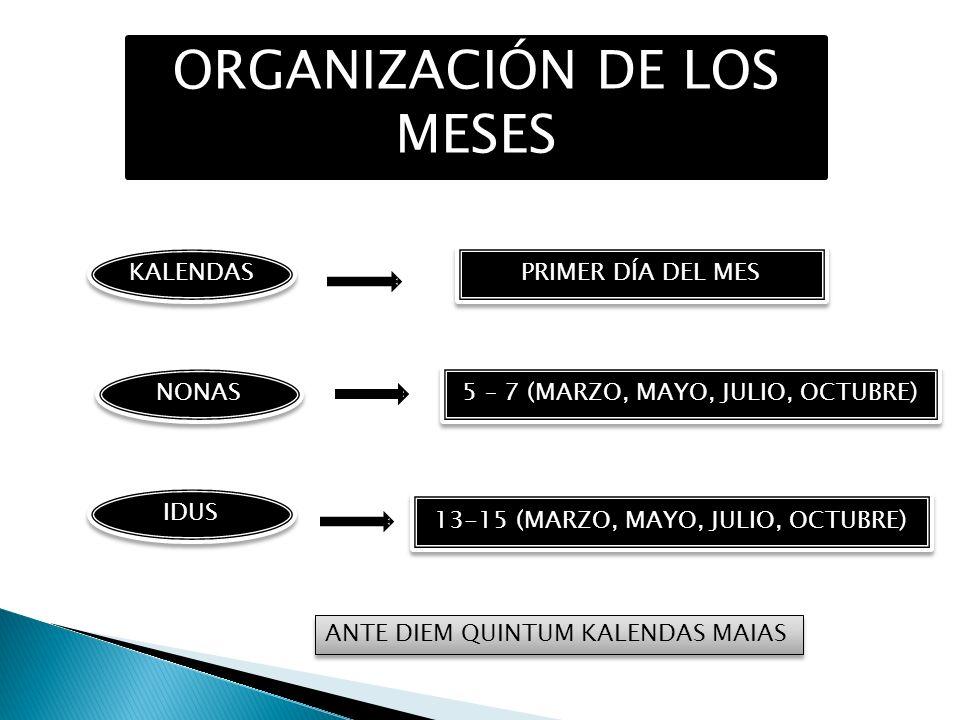 ORGANIZACIÓN DE LOS MESES