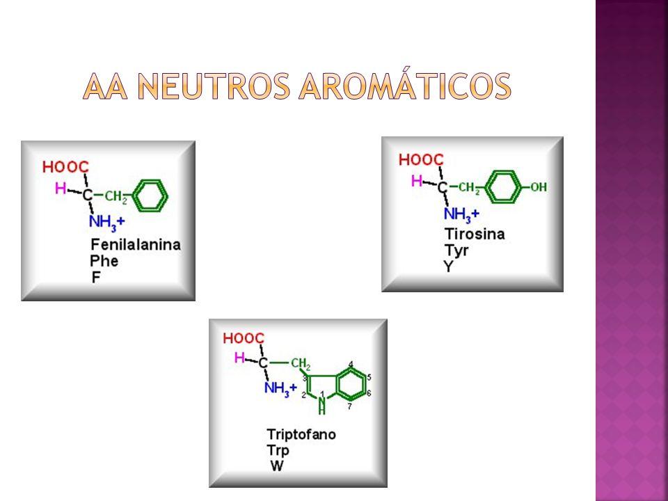 AA neutros aromáticos