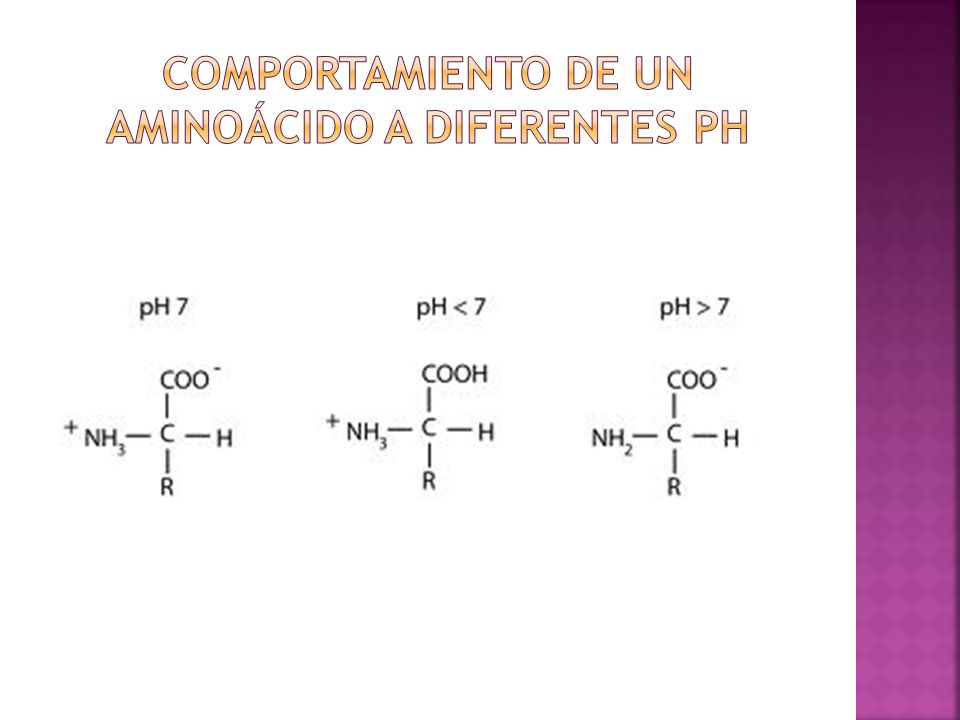 Comportamiento de un aminoácido a diferentes ph