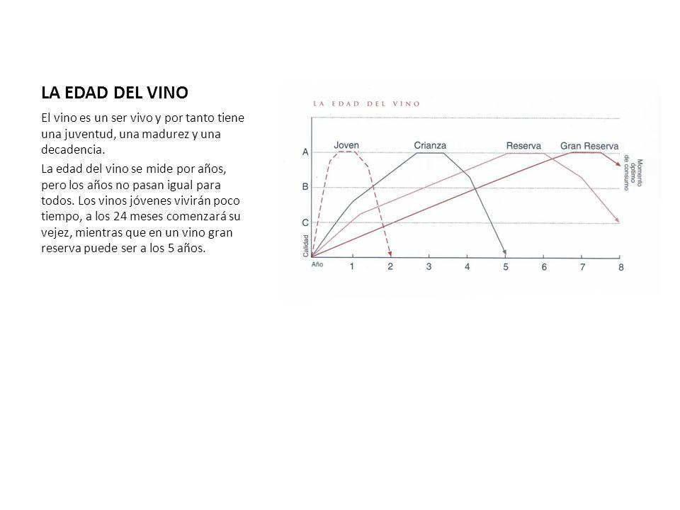 LA EDAD DEL VINO El vino es un ser vivo y por tanto tiene una juventud, una madurez y una decadencia.