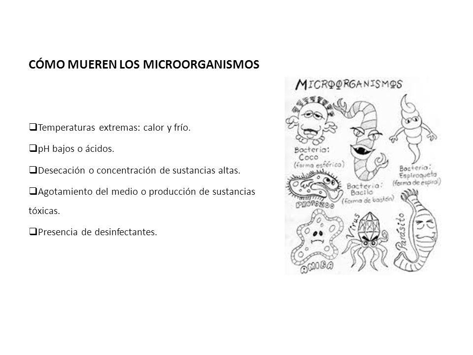 CÓMO MUEREN LOS MICROORGANISMOS