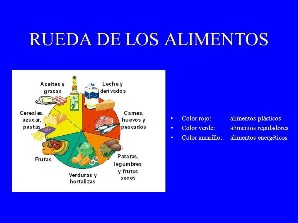 RUEDA DE LOS ALIMENTOS Color rojo: alimentos plásticos