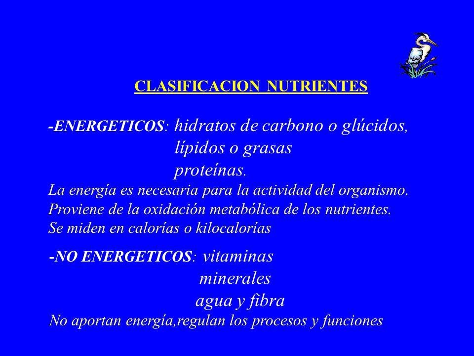 CLASIFICACION NUTRIENTES