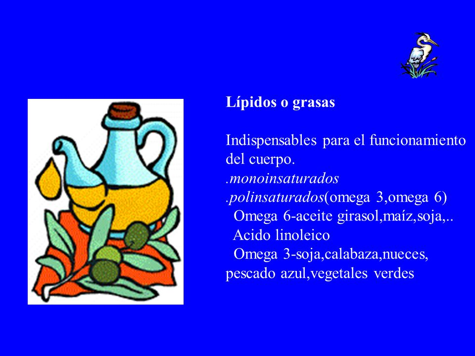 Lípidos o grasasIndispensables para el funcionamiento. del cuerpo. .monoinsaturados. .polinsaturados(omega 3,omega 6)