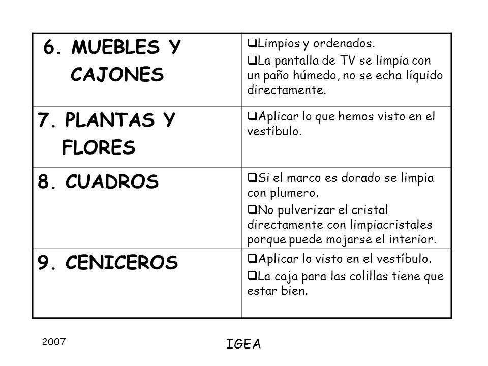 6. MUEBLES Y CAJONES 7. PLANTAS Y FLORES 8. CUADROS 9. CENICEROS IGEA