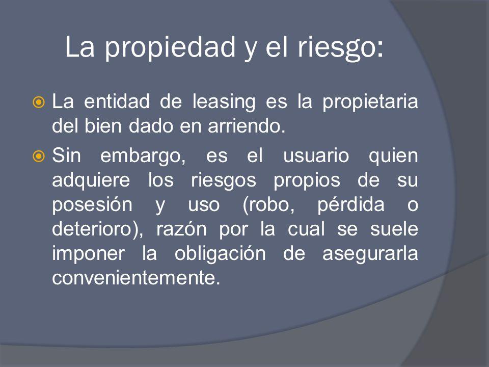 La propiedad y el riesgo: