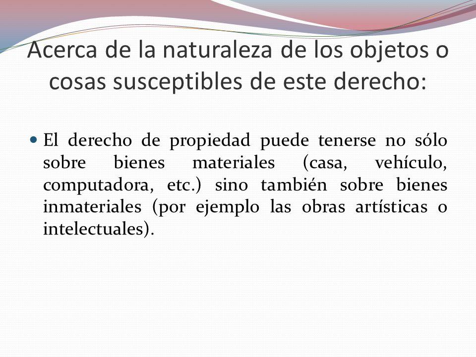 Acerca de la naturaleza de los objetos o cosas susceptibles de este derecho: