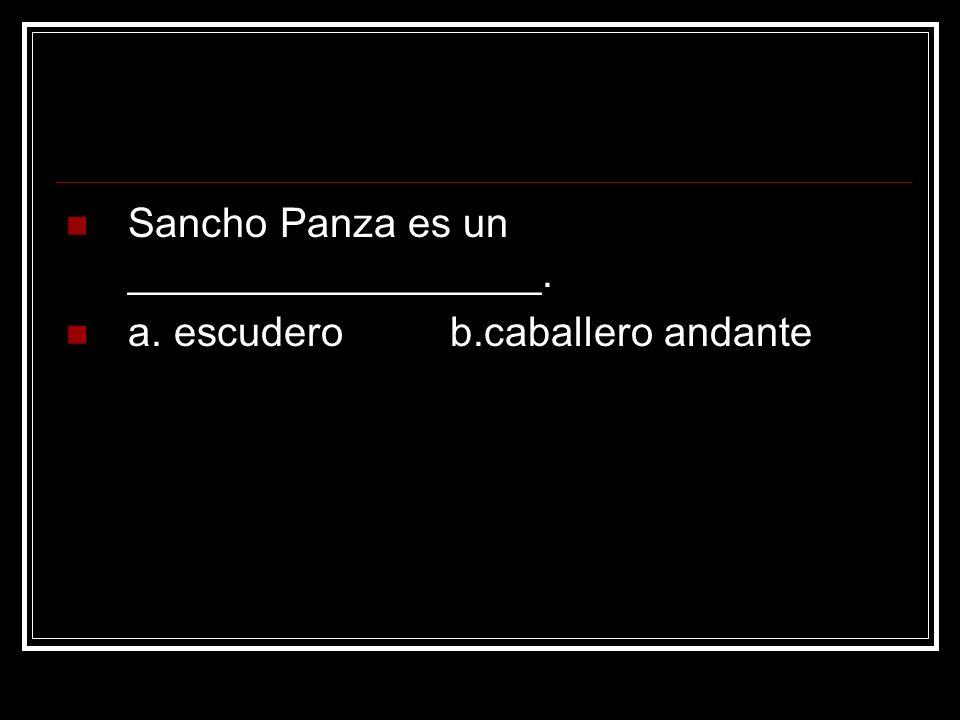 Sancho Panza es un __________________.