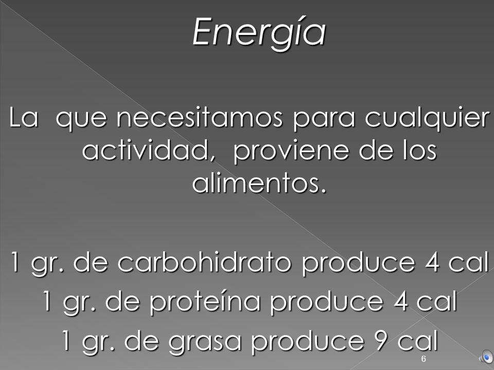 EnergíaLa que necesitamos para cualquier actividad, proviene de los alimentos. 1 gr. de carbohidrato produce 4 cal.