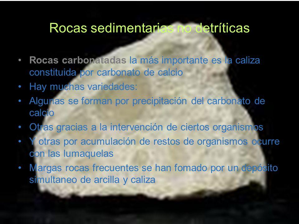 Rocas sedimentarias no detríticas