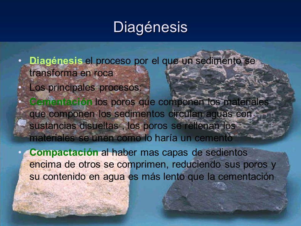 Diagénesis Diagénesis el proceso por el que un sedimento se transforma en roca. Los principales procesos: