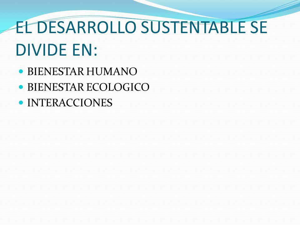 EL DESARROLLO SUSTENTABLE SE DIVIDE EN: