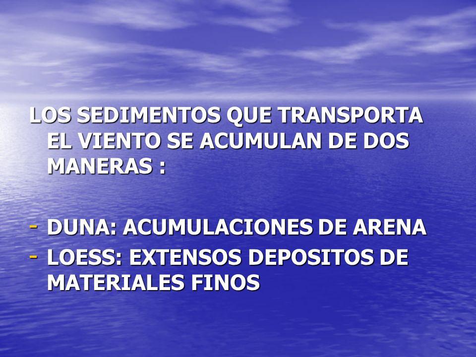 LOS SEDIMENTOS QUE TRANSPORTA EL VIENTO SE ACUMULAN DE DOS MANERAS :