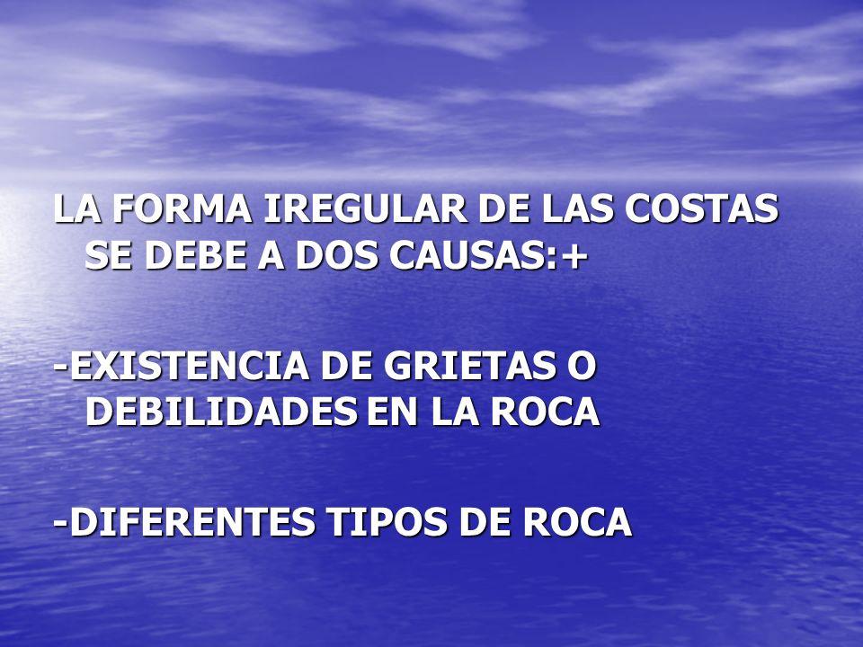 LA FORMA IREGULAR DE LAS COSTAS SE DEBE A DOS CAUSAS:+