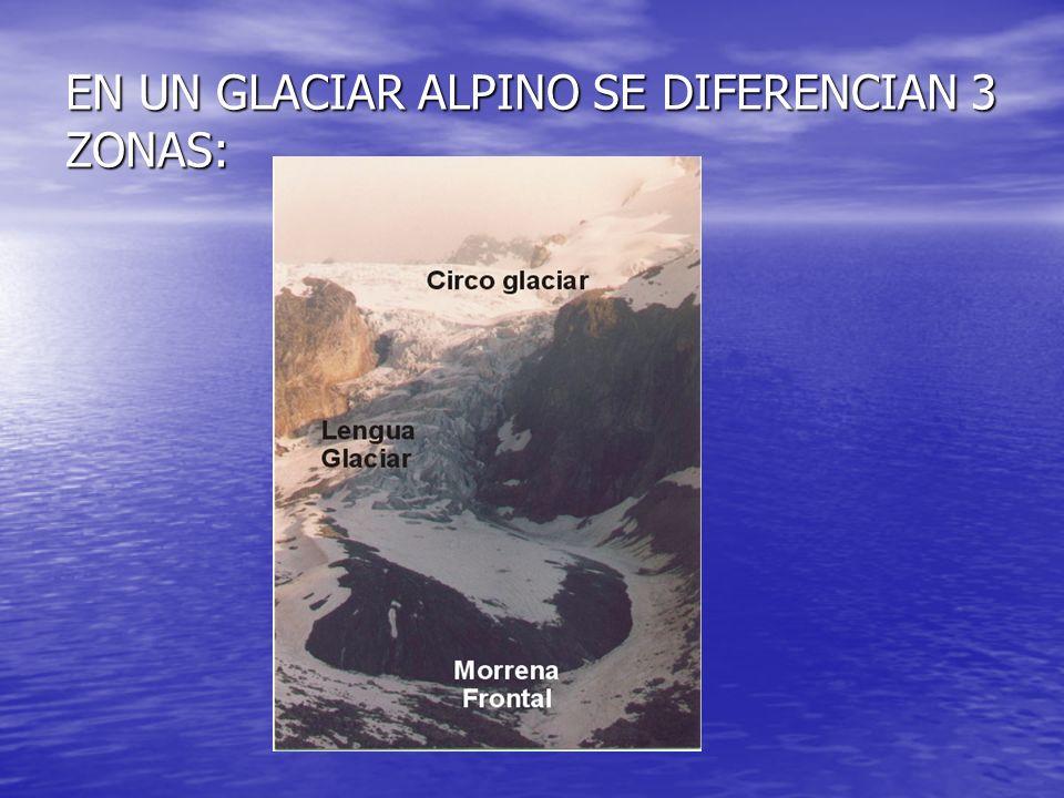 EN UN GLACIAR ALPINO SE DIFERENCIAN 3 ZONAS: