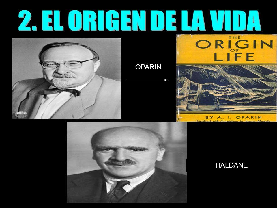 2. EL ORIGEN DE LA VIDA OPARIN HALDANE