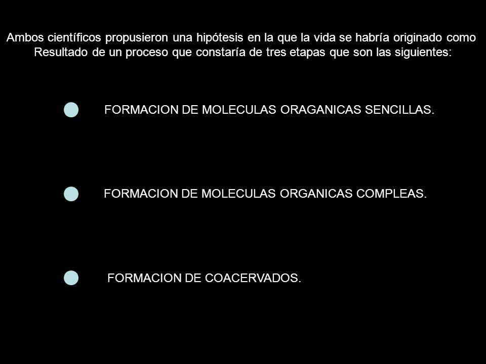 FORMACION DE MOLECULAS ORAGANICAS SENCILLAS.