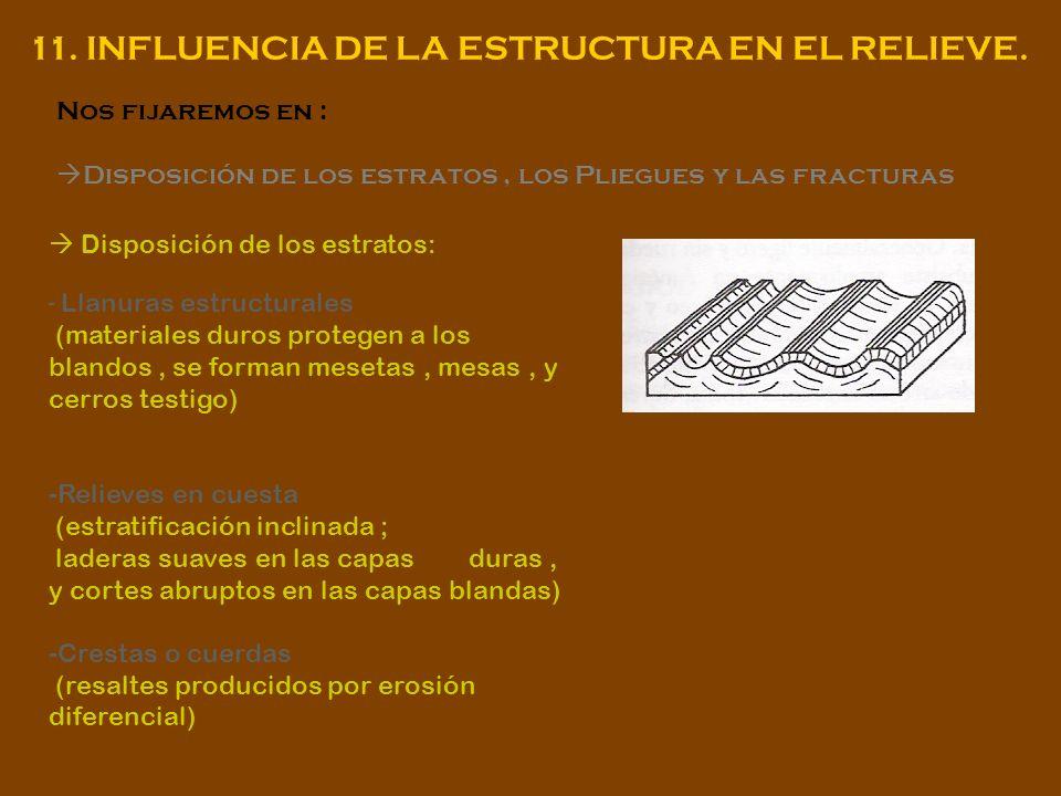 11. INFLUENCIA DE LA ESTRUCTURA EN EL RELIEVE.
