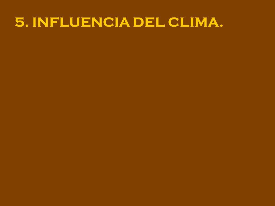 5. INFLUENCIA DEL CLIMA.