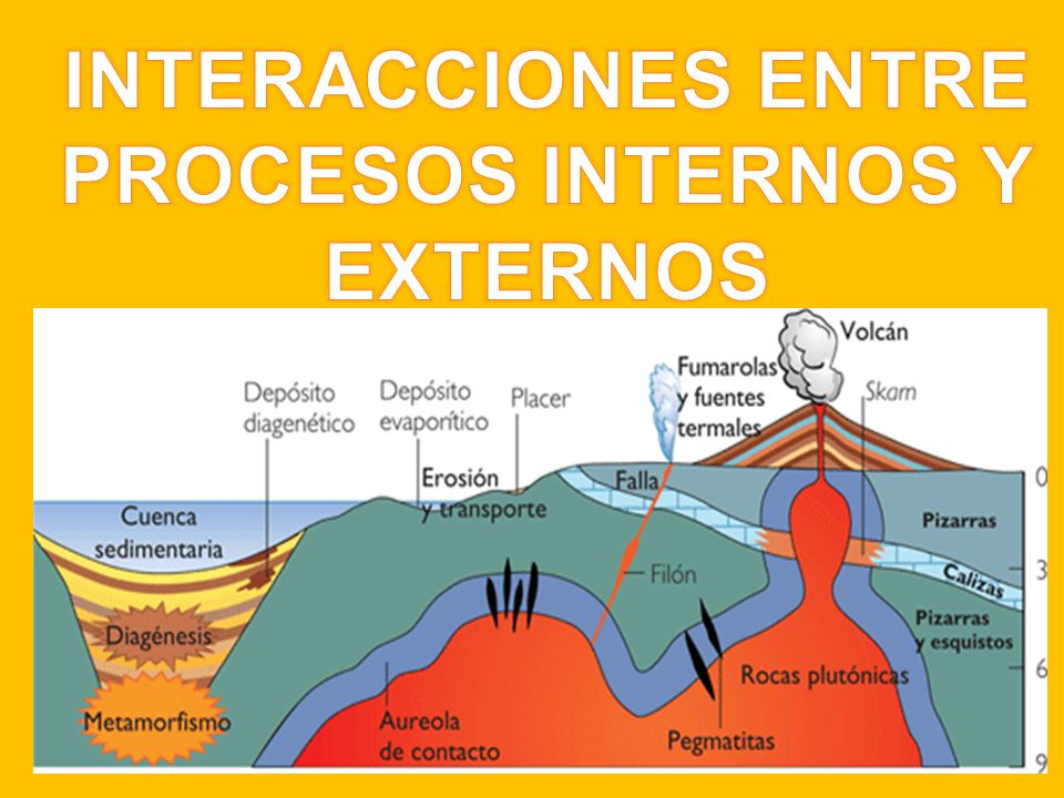 INTERACCIONES ENTRE PROCESOS INTERNOS Y EXTERNOS