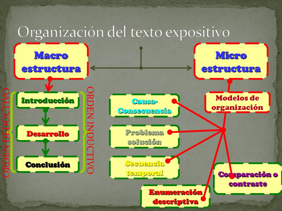 Organización del texto expositivo