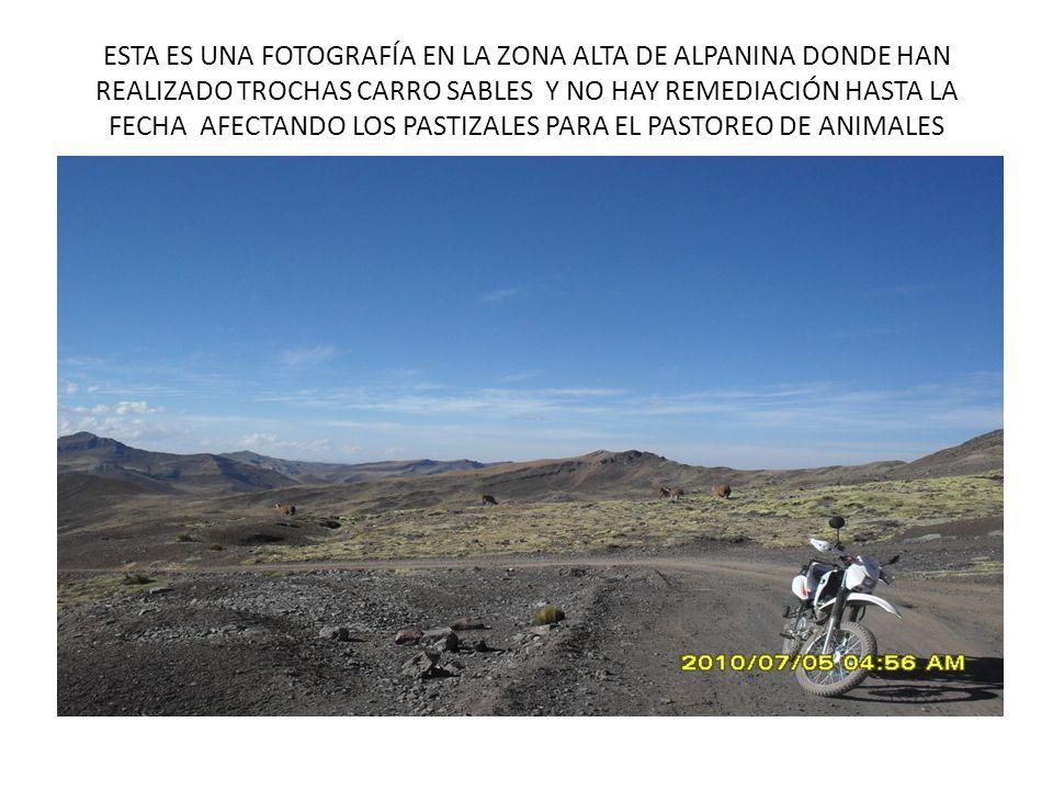 ESTA ES UNA FOTOGRAFÍA EN LA ZONA ALTA DE ALPANINA DONDE HAN REALIZADO TROCHAS CARRO SABLES Y NO HAY REMEDIACIÓN HASTA LA FECHA AFECTANDO LOS PASTIZALES PARA EL PASTOREO DE ANIMALES