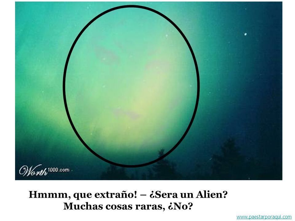 Hmmm, que extraño! – ¿Sera un Alien Muchas cosas raras, ¿No