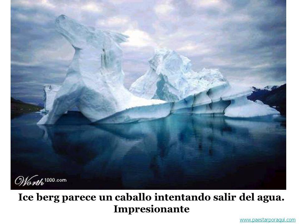 Ice berg parece un caballo intentando salir del agua. Impresionante
