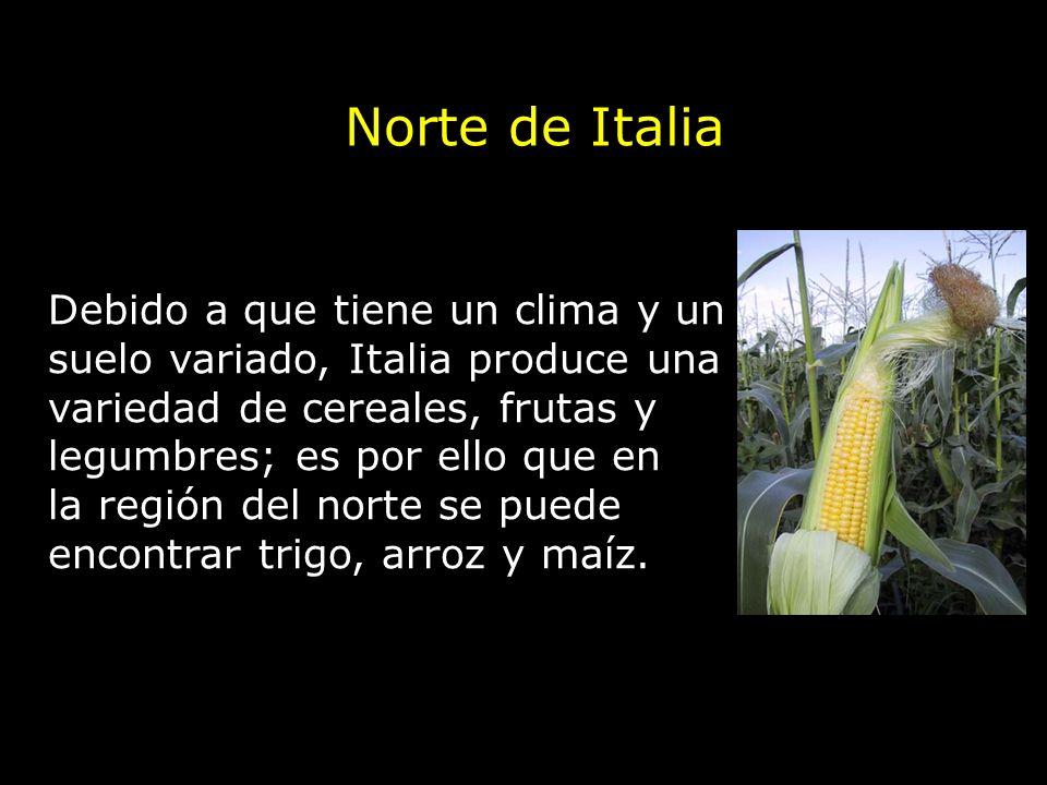 Norte de Italia Debido a que tiene un clima y un