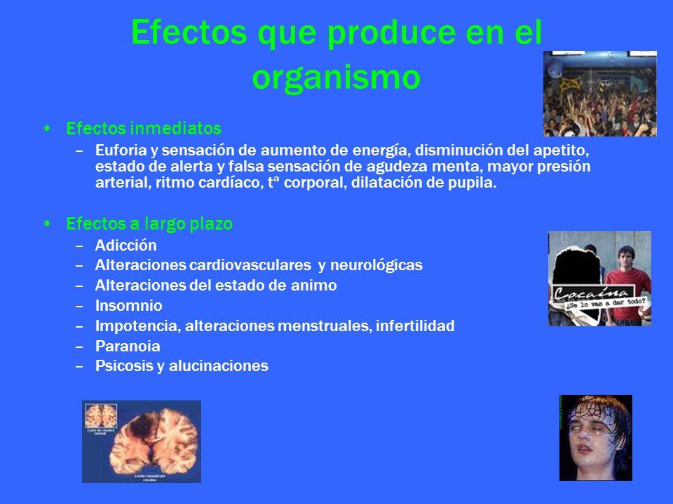 Efectos que produce en el organismo