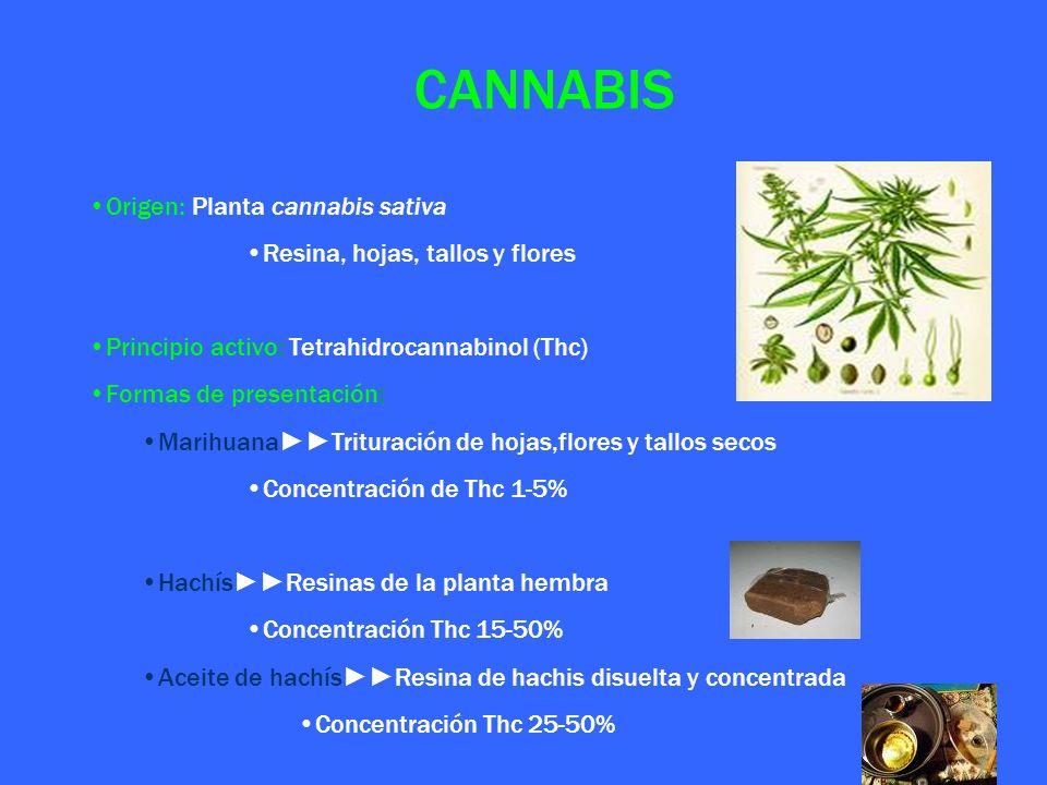 CANNABIS Origen: Planta cannabis sativa Resina, hojas, tallos y flores