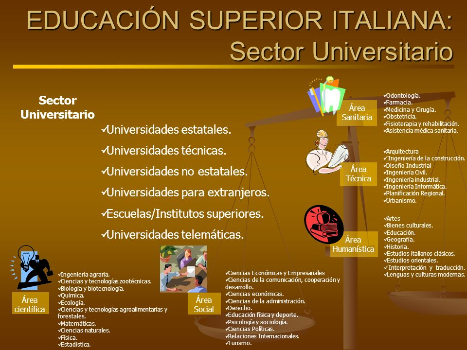 EDUCACIÓN SUPERIOR ITALIANA: Sector Universitario