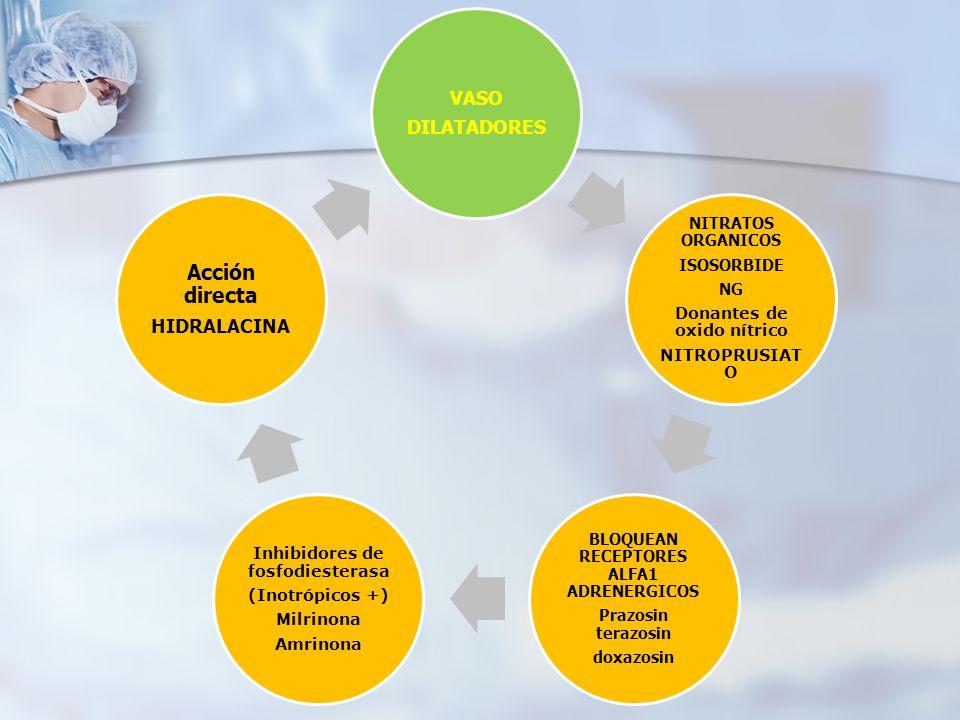 Acción directa VASO DILATADORES HIDRALACINA NITRATOS ORGANICOS