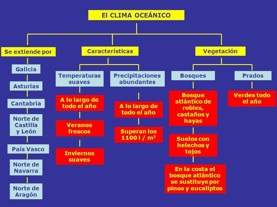 El CLIMA OCEÁNICO Se extiende por Características Vegetación Galicia