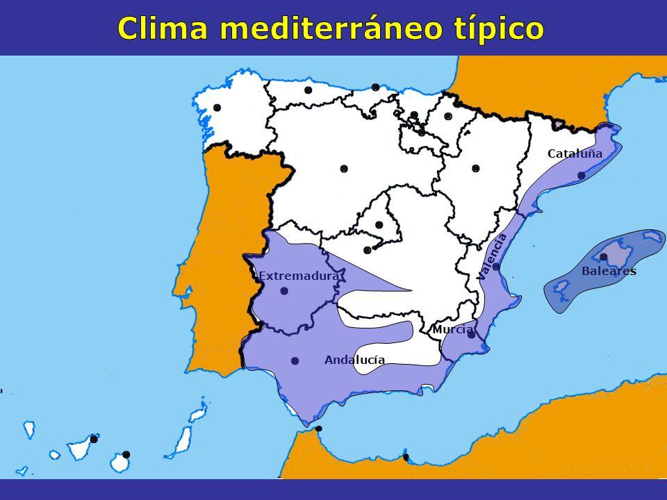 Clima mediterráneo típico