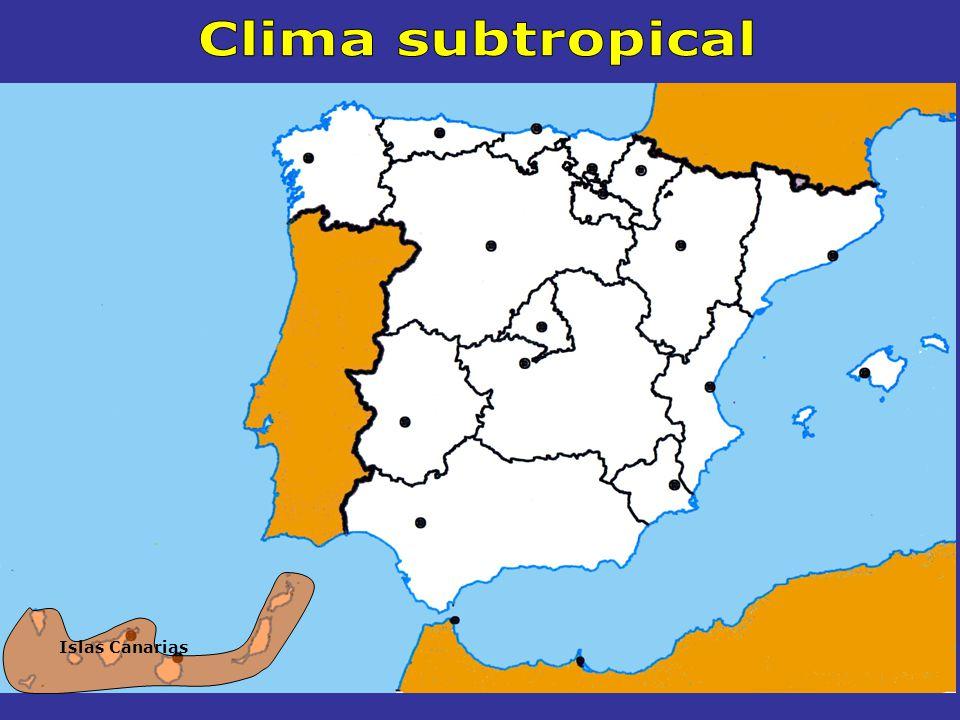 Clima subtropical Islas Canarias