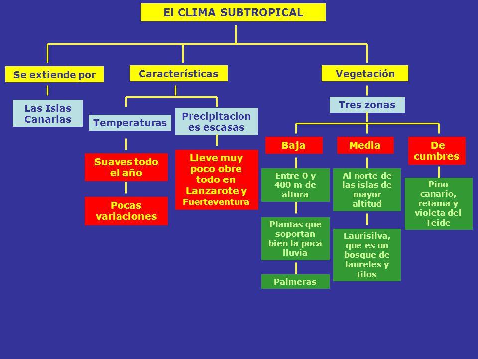 El CLIMA SUBTROPICAL Se extiende por Características Vegetación