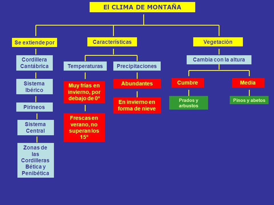 El CLIMA DE MONTAÑA Se extiende por Características Vegetación