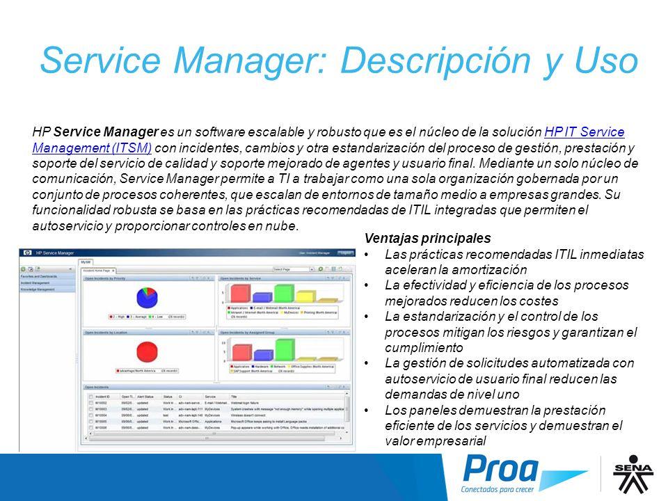 Service Manager: Descripción y Uso
